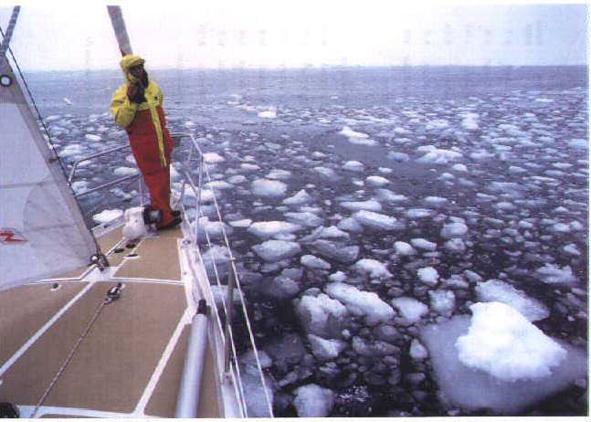 Arka! en avant pour l'Antarctique